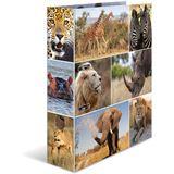 HERMA Ordner A4 Afrika Tiere