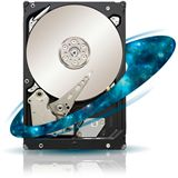 "1000GB Seagate Enterprise Capacity 3.5 HDD ST31000424SS 32MB 3.5"" (8.9cm) SAS 6Gb/s"