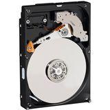 """250GB WD AV Serie WD2500AVJS 8MB 3.5"""" (8.9cm) SATA 3Gb/s"""